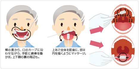頬の奥から、口のカーブに沿わせながら、手前に綿棒を動かす。上下唇の裏の周辺も。上あご全体を前後に、舌は円を描くようにマッサージ。